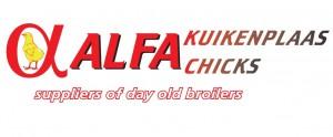 Alfa Chicks